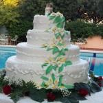 ricevimenti-banchetti-matrimonio-park-hotel-san-michele-martina-franca-taranto-puglia_6